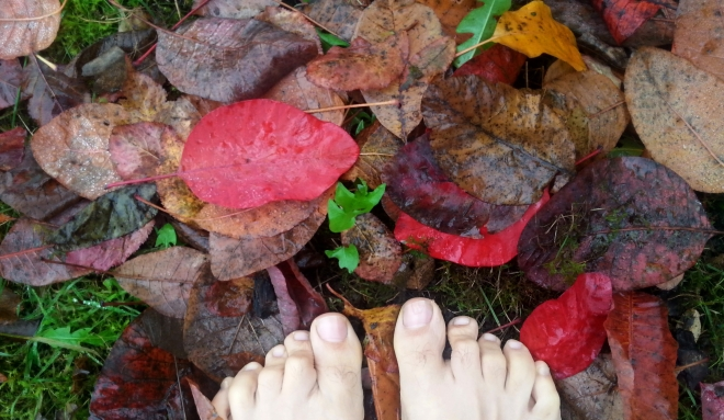 feet_garden
