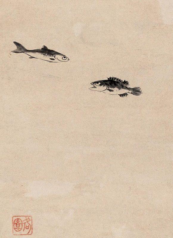 doublefish_ZhuDa