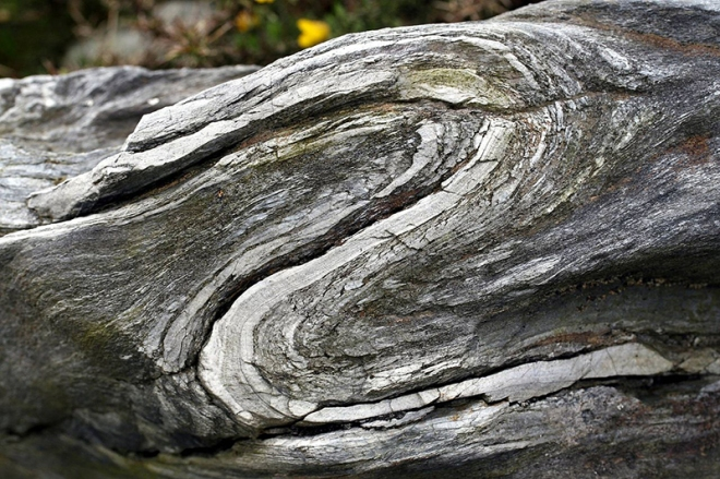 Folds_near_Commana_in_Brittany_France_2